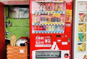 福岡西公園地點最高的熱狗堡店的背後故事