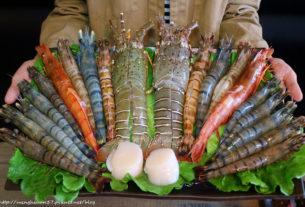 【桃園 | 美食】金鍋盃桃園店┃霸氣火鍋海鮮雙人餐,想要吃到痛風看這裡!