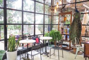 【新北淡水 | 咖啡廳】絕美的空氣感森之玻璃屋 ◊ Binma Area 134